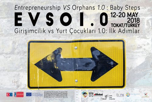 Entrepreneurship vs Orphans 1.0 : Baby Steps